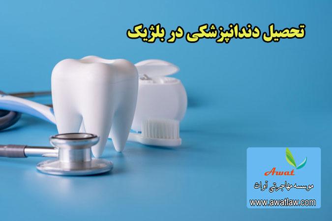 تحصیل دندانپزشکی در بلژیک