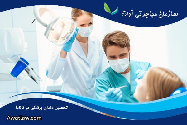 تحصیل دندان پزشکی در کانادا