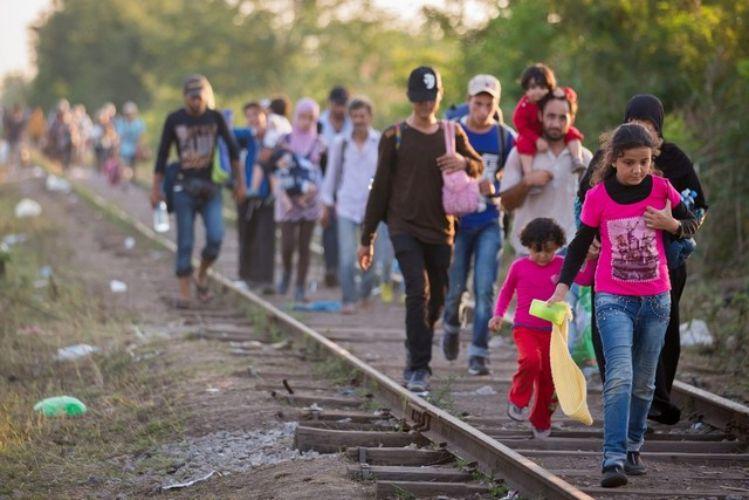 مهاجرت قاچاقی به سوئیس