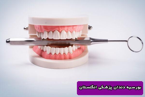 بورسیه دندان پزشکی انگلستان