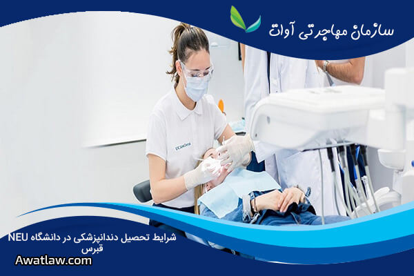 شرایط تحصیل دندانپزشکی در دانشگاه NEU قبرس